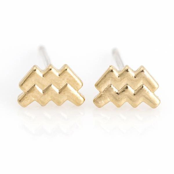 Aquarius Earrings Zodiac Stud Delicate Earrings Gold Plated over Brass 5NAAE111